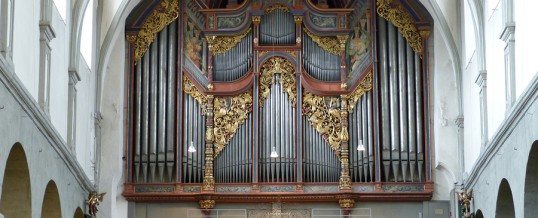 18.08.2017 – Международные органные концерты в Констанце 2017(Германия)